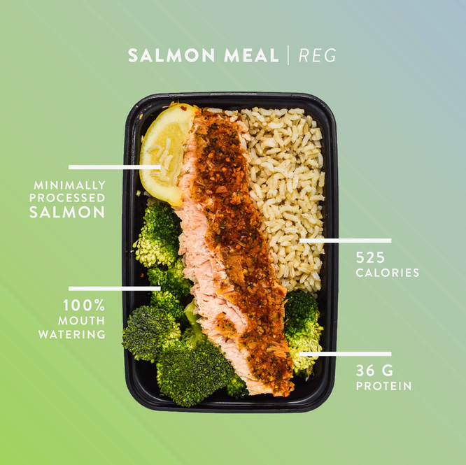 Salmon_Meal.jpg