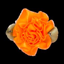 Tangerine_Single_300x300
