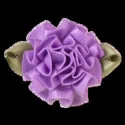 Grape_Single_300x300