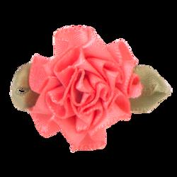 Watermelon_Single_300x300