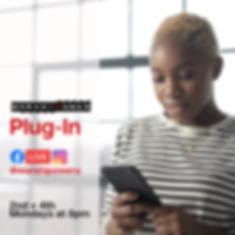 Plugin-3.png