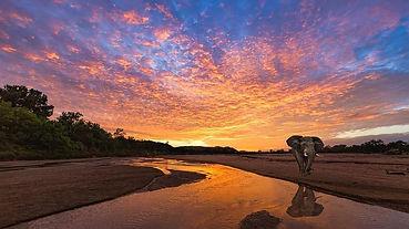 african-sunset.jpg