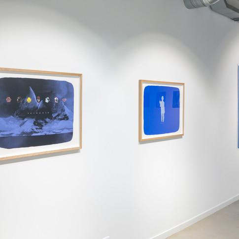 Galerie net+ - 2019