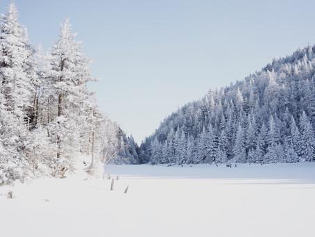 Parc d'environnement naturel de Sutton : un paradis québécois