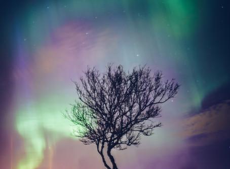 Islande : ma première rencontre avec les aurores boréales
