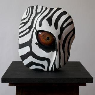 Zebra'sEye