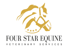 FSE Gold png.png