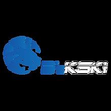 Bykski-250x250.png