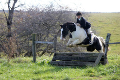 Jumping a Coop in the Hunt Field