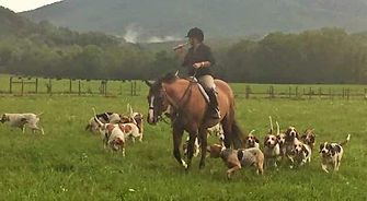 Missy and the Hounds