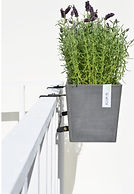 ECOPOTS Hanging Bruges for balcony