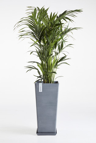 Ecopots Rotterdam High with saucer in Blue Grey