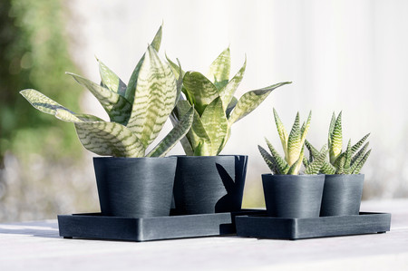 Ecopots Display Platters 20 and 25 with Amsterdam Mini's in Dark Blue