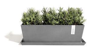 ECOPOTS Bruges 45 cm planter with saucer