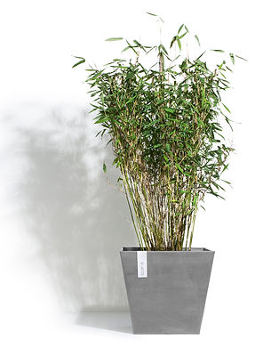 ECOPOTS Rotterdam 40 cm planter