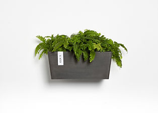 Ecopots Manhattan medium wall planter in Dark Grey