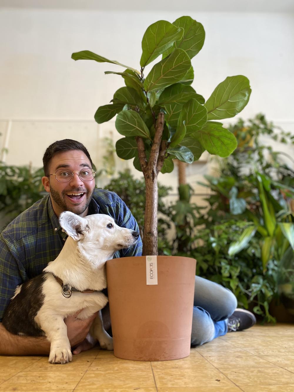 Planttrekker Thomas met Ficus en zijn Ecopots Venice