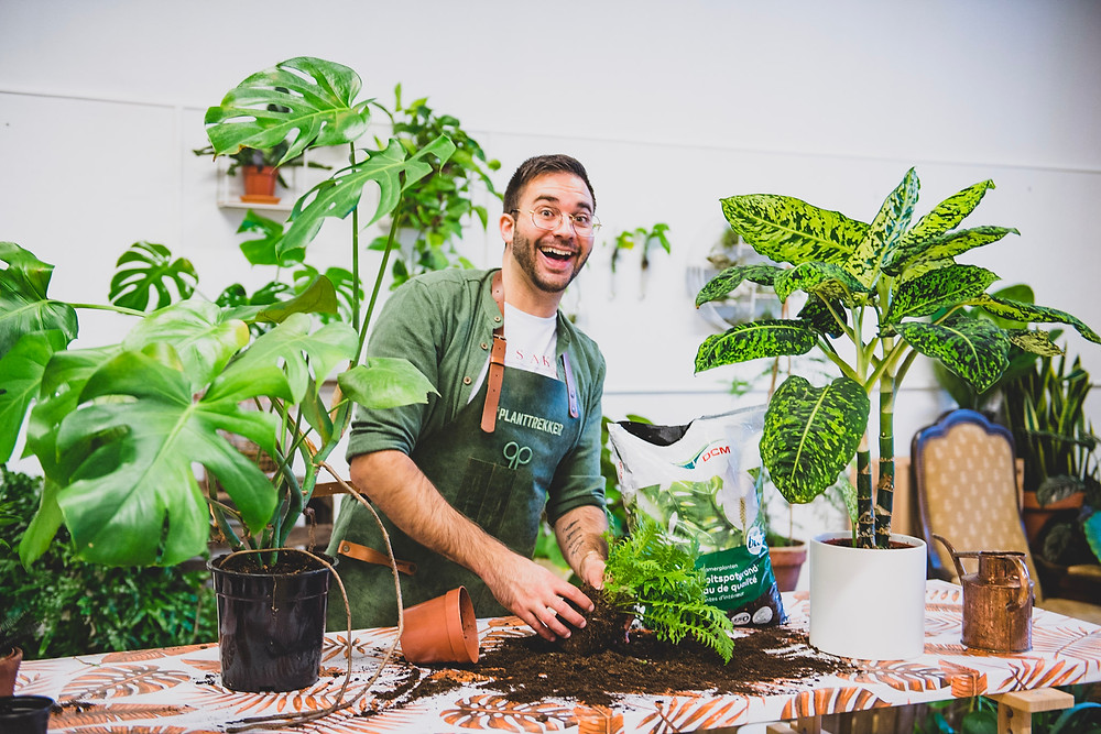 Plantrekker Thomas Goyvaerts in his plant studio