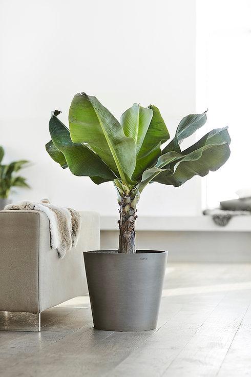 ECOPOTS Amsterdam Grey flower pot in a S