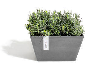 ECOPOTS Berlin Square 31 cm flower pot and planter