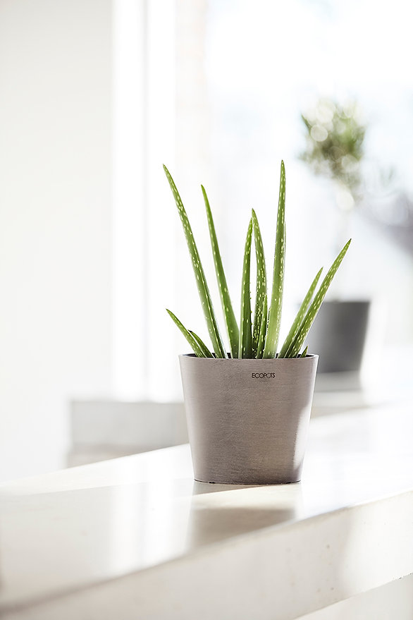 ECOPOTS Amsterdam Mini French Taupe smal
