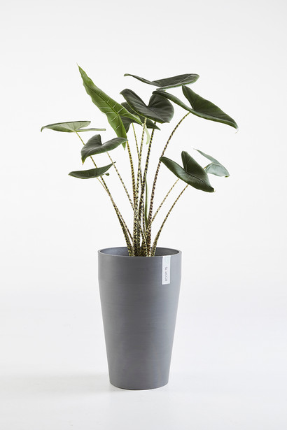 Ecopots Sankara Mid High in Blue Grey