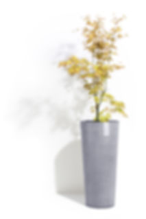 ECOPOTS Amsterdam High 70 cm flower pot and planter