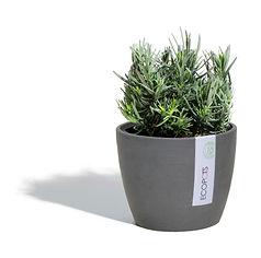 ECOPOTS Stockholm small flower pot
