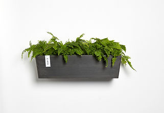 Ecopots Manhattan rectangular wall planter in dark grey
