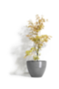 ECOPOTS Antwerp 40 cm flower pot and planter