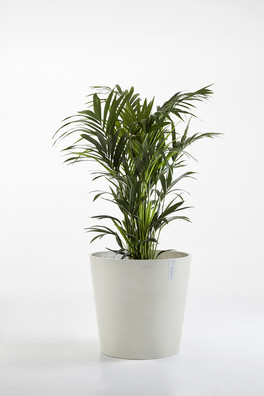 Ecopots Amsterdam 60 in White Grey
