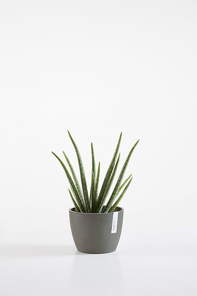 Ecopots Stockholm small flower pot in Grey