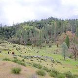 Mandala Springs 1.jpeg