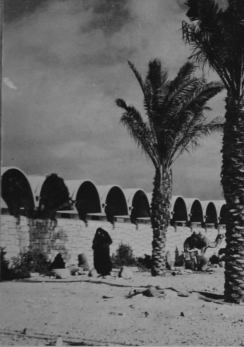 מבנים ומרקמים בבאר שבע