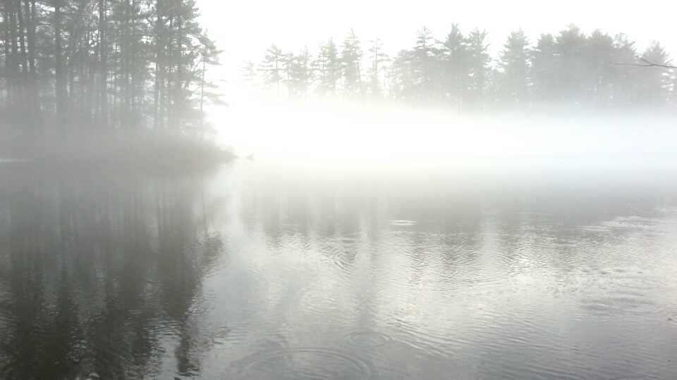 foggy lake northern ontario