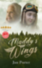 Maddys Wings ebook literary fiction by J