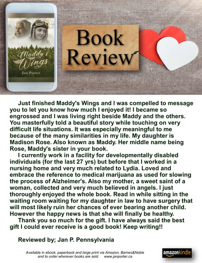 Maddys Wings. literary fiction. book rev