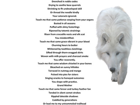 'Grandmother' an amazing poem inspired by 'Soul Skin'