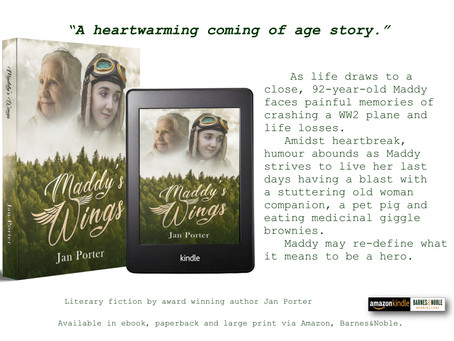 HOT NEW RELEASE ~ 'Maddy's Wings', literary fiction by Jan Porter