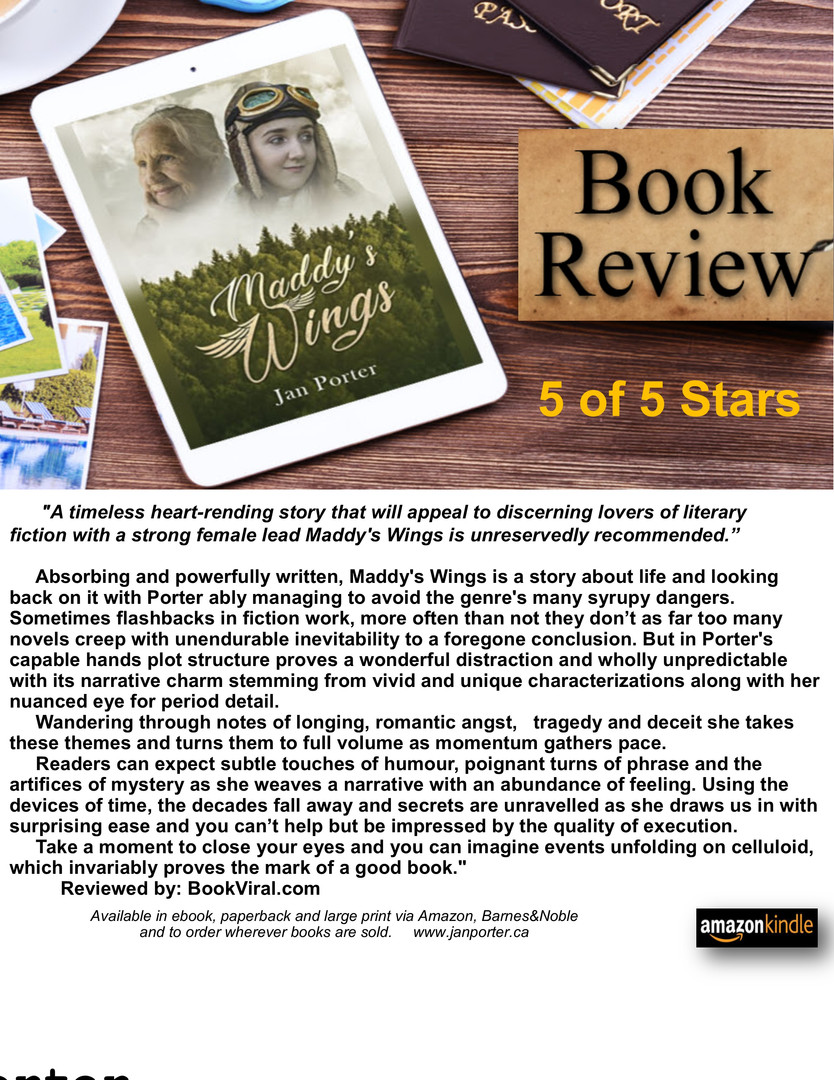 Maddys Wings. literary fiction. BookRevi