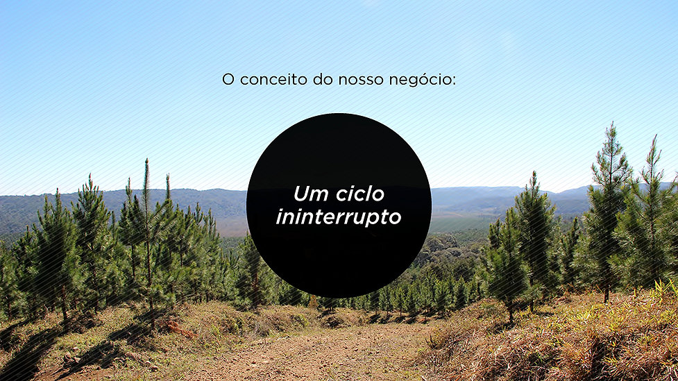 03_Nektar_FRP.jpg