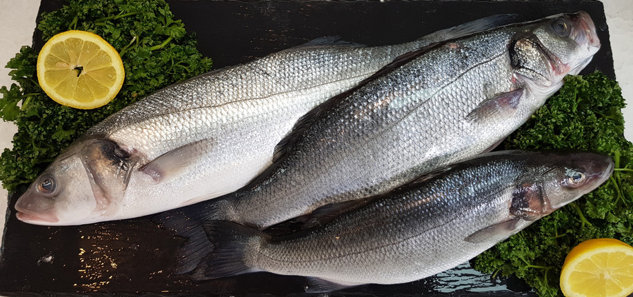Farmed Sea Bass