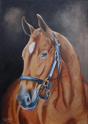 11. Cavalo, AST, 70x50, 2019 editada.JPG