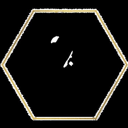 RJD%20web%20gold%20hexagon%20(3)_edited.