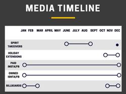 Activation Timeline  II