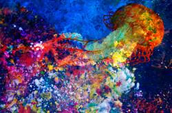 Horizontal Abstract Jellyfish