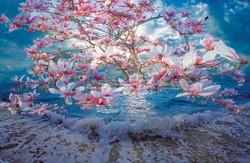 East End Magnolia Ocean