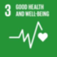 3 good health weel being.png