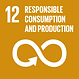 12 responible consumption and production