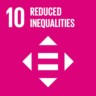 10 reduced inequalities.png